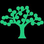 Live Oak Banking Company Logo
